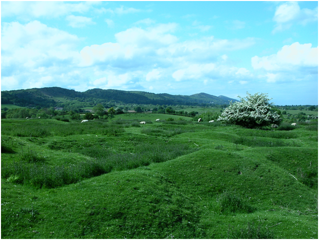 Looking up to the Malvern Hills – green and lovely.png