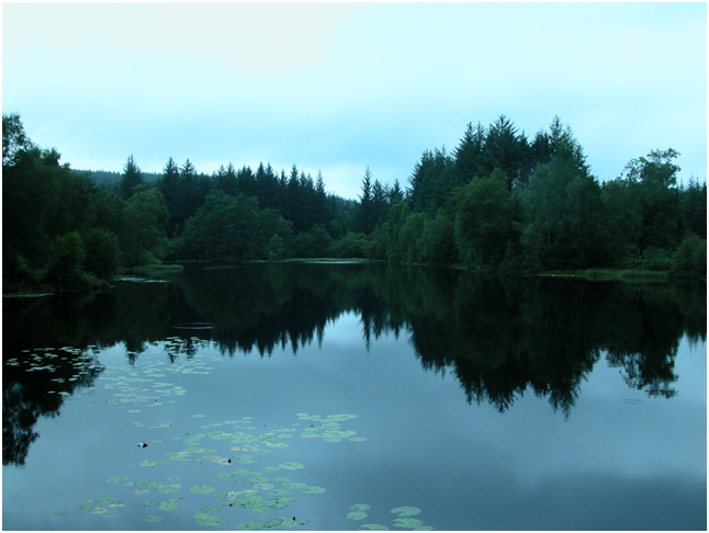 Calm and peaceful Bruntis Loch (after the rain).png