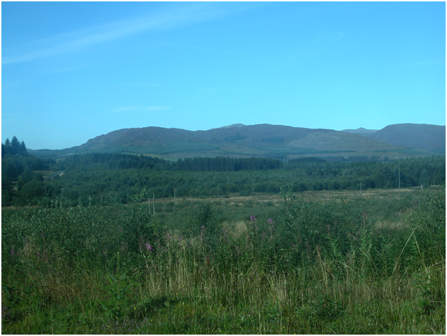 View out from Midge City, Galloway Forest Park.png