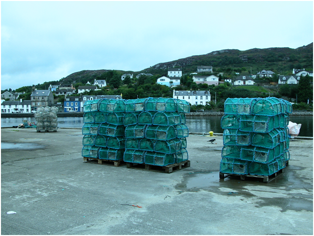 Stacks of lobster pots in Tarbert – nowhere to buy any.png