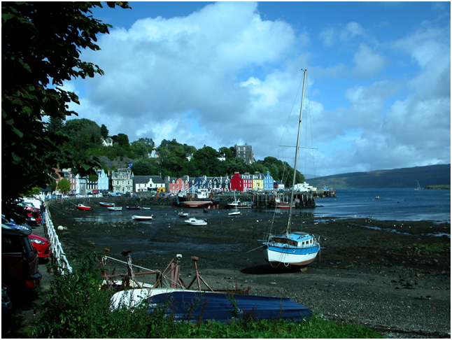 Tobermory in the sunshine.png